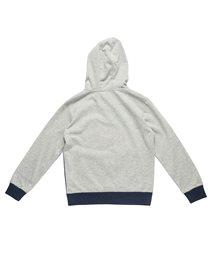 Multi Stripe Hooded Fleece