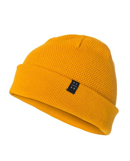 Entered Beanie
