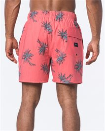 Short de bain Volley Caicos 16