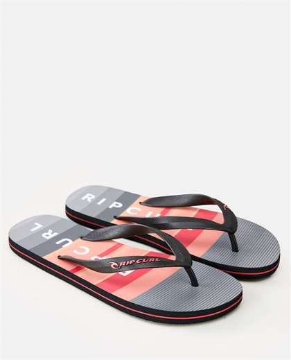 Setters Shoes